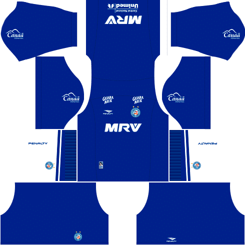 kit bahia dls17 uniforme alternativo goleiro casa