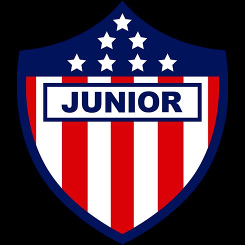 Kit Junior